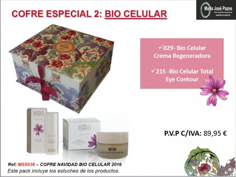cofre-especial-2